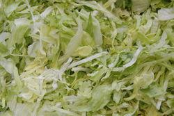 Frische Blattsalate.