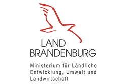 Dieses Projekt ist kofinanziert aus Mitteln des Landes Brandenburg.